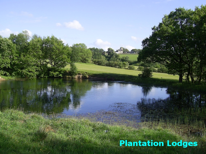Plantation Lodges